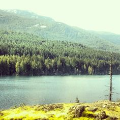 Go for a hike and checkout any of the many walking trails such as Westwood Lake - Nanaimo BC