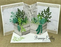 Fancy Fold Cards, Folded Cards, Planter Boxes, Planters, Pop Up Box Cards, Birthday Cards For Men, Male Birthday, Engagement Cards, Card Tutorials