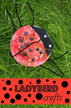 Colourful ladybug crafts for kids based on the enchanting picture book Ella by Alex T. Summer Crafts, Fun Crafts, Crafts For Kids, Arts And Crafts, Ladybug Crafts, Ladybug Party, Insect Crafts, Spring Theme, Paper Plate Crafts