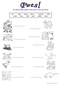singular and plural nouns worksheets for kindergarten