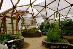 Inside of a geodesic dome green house in BC. Nine month growing season.