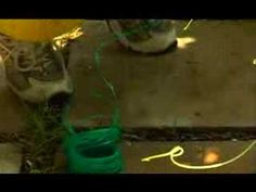 Garden Girl TV: Vertical Gardening Two