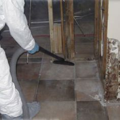 Initiate A Mold Removal Program To Save The Structural Of A Building