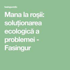 Mana la roșii: soluționarea ecologică a problemei - Fasingur