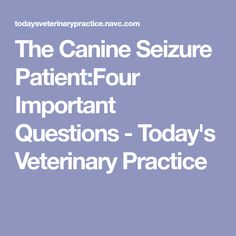 The Canine Seizure Patient:Four Important Questions - Today's Veterinary Practice