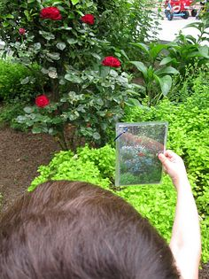 Photo scavenger hunt: take pictures of things around your yard or neighborhood and go on a hunt!
