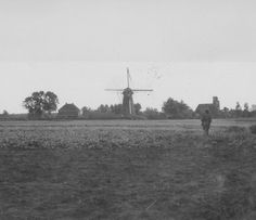 A US Army Paratrooper of the 101st Airborne, the Screaming Eagles, on  patrol near a windmill on the Island, Heteren, Holland, in October 1944  during Operation Market-Garden.