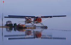 Two Dehaviland DHC-2 Beaver floatplanes warming up early in the morning.