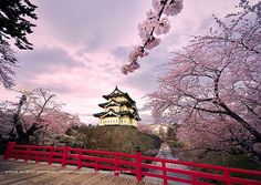 Spectacular Places: The Hirosaki Castle in Cherry Blossom, Japan