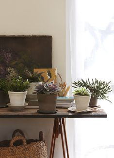 ruemag:    Never underestimate the ability of plants to spice up your decor. This table is beautiful topped with succulents! source.