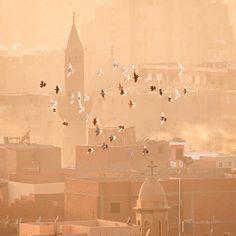 Dawn in Cairo