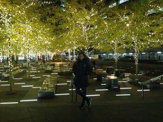 NY love