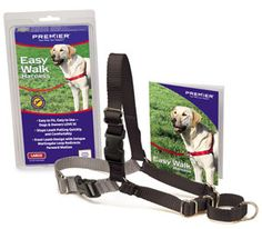 I love the easy walk harness.  It gives you a little extra control of the dog, even if the dog is not a puller.  We use easy walk harnesses on Topher and Tanker when we work them.  Neither pull on the leash, but they allow us to have good control of them without tugging on their necks.