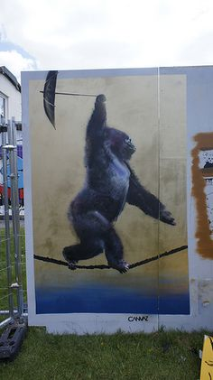 Dancing monkey is all you want to see, Canvaz