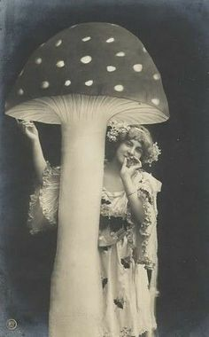 Vintage French Postcard Woman Mushroom ACEO by RabbitMoonCottage Vintage Pictures, Old Pictures, Vintage Images, Old Photos, Mushroom Art, Giant Mushroom, Mushroom Cloud, Vintage Fairies, Vintage Witch