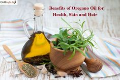 "maheshitaliya: ""The Benefits of Oregano Oil include its ability to treat fungal infection, menstrual problems, respiratory condition, etc. Health Benefits of Oregano Oil… """