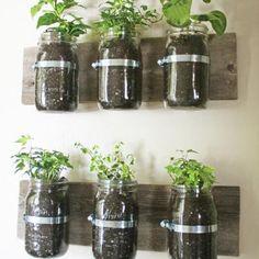 10 façons de réussir à faire pousser des fines herbes même si t'as peu d'espace | NIGHTLIFE.CA