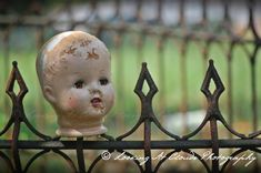 decapitated doll head on a cemetery fence by LookingAtClouds