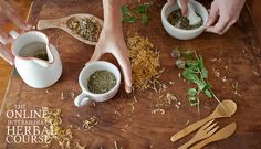 Intermediate Herbal Course: Online Herbal Course at the University of New England - $360 total, can do in payments of $120