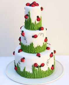 Over 30 Awesome Cake Ideas! Over 30 Awesome Cake Ideas!,Cakes and CupCakes Ladybug Cake…adorable! Pretty Cakes, Cute Cakes, Beautiful Cakes, Amazing Cakes, Fondant Cakes, Cupcake Cakes, Zebra Cakes, Owl Cakes, Fondant Bow