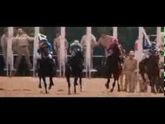 Secretariat final race scene (english) - YouTube.    From the movie , Belmont Stakes .......