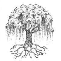 Meditations – Ana Barreto Weeping Willow Tattoo, Willow Tree Tattoos, Grounding Meditation, Morning Meditation, Life Tattoos, Body Art Tattoos, Roots Tattoo, Tree Roots, Forearm Tattoos