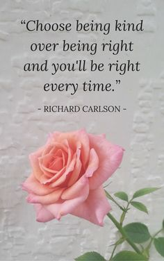 Love this quote: Choose being kind over being right and you will be right every time.