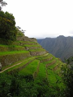 Inca Terrace at the Inca Trail. www.x-tremetourbulencia.com #XtremeTourbulencia #IncaTrail #Cusco #Peru
