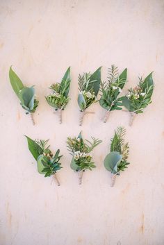 3 - Boutonniere inspiration; green but maybe with a little added color. Chad will have four groomsmen, but I'll also have four bridesmen and I'd like for my guys to have something different in theirs so people can tell they're with me.