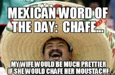 64 entries are tagged with mexican word of the day jokes. Mexican word of the day: Joe Biden Joe Biden my ear without permission! Mexican Word Of Day, Mexican Words, Mexican Quotes, Mexican Humor, Word Of The Day, Funny Signs, Funny Jokes, Funny Mems, Stupid Jokes