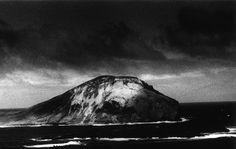 Daido Moriyama: Untitled (from Hawaii), 2007
