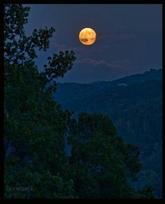 """Harvest moon by Ashley Bowen of """"Click Chick Photography"""""""