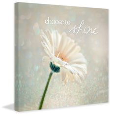 Choose to Shine - Marmont Hill