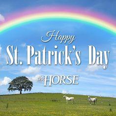 Happy St. Patrick's Day!: