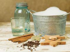 Pest-Free, Naturally… Ants, Fleas,Grain moths and weevils,House flies, Moths & Silverfish…