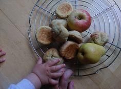 Fruity Rolls (suitable for babies) Quick Snacks, Healthy Baking, Rolls, Babies, Fruit, Food, Babys, Buns, Essen