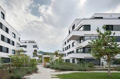 Galería de Complejo Residencial Sonnenhof / Fischer Architekten - 1