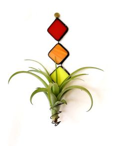 """Decorative stained glass planter complete with your choice of air plant, red, green or purple. Vibrant colors of Red, Amber orange and yellow, beautiful pop of color ready for summer.  Planter is ideal for spots where you don't have a lot of room. Great for a gift for a dorm room, camper van, mobile home. Terrific gift for someone who travels and takes their home with them.  Planter measures: 7"""" long (tall) from top to bottom of spring and each diamond is 1"""" x 1"""". Plant Size: Small to…"""