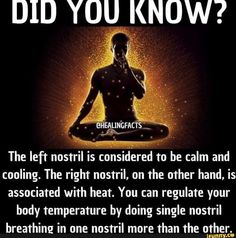 Surya Bhedana is said to stimulate the brain and increase body heat. Sit in a comfortable asana and make the mrigi mudra. Block your left… Ayurvedic Healing, Holistic Healing, Ayurveda, Chakra Healing, Pranayama, Health Facts, Health Tips, Qi Gong, Yoga Breathing Techniques