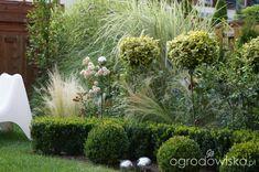 Ogród magdalenka