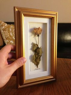 Beautifully Framed Dried Rose, Golden Frame, Shadow Box, Fine Matting | eBay