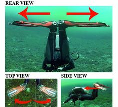 How to Frog Kick: Finning Techniques for Scuba Diving Scuba diving opens a whole new world for you. Scuba Diving Quotes, Best Scuba Diving, Scuba Diving Gear, Cave Diving, You Are The World, A Whole New World, Maui Vacation, Big Island Hawaii, Travel Usa
