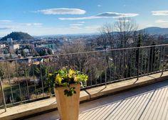 Loft, Plants, Graz, Penthouse Apartment, Real Estate, Luxury, Objects, Sunday, Lofts