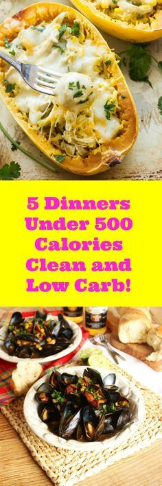 Watching your calorie intake? You will absolutely love these fantastic 5 Healthy Dinners under 500 calories! Now you'll enjoy your dinner with no worries of over eating. Weight loss is easy with healthy meals.
