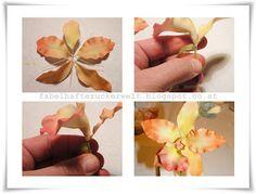 ZUCKERWELT: Cattleya Orchidee