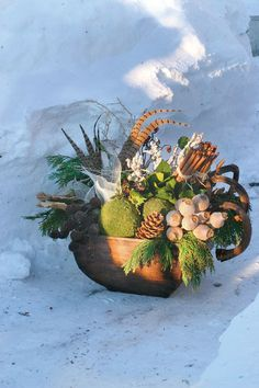 If you're striving for a garden with four-season appeal, don't overlook your containers. Here are 6 winter container ideas that never fail. Different Plants, Types Of Plants, Growing Vegetables, Growing Plants, Winter Container Gardening, Coastal Christmas, Container Flowers, Ornamental Grasses, Garden Inspiration