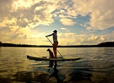 Relaxing evening paddleboarding at the Madge Lake with Kaliegh Zerr and her best pal Zeppelin.