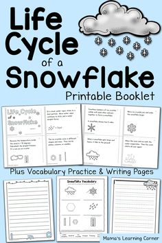 Snowflake Life Cycle Booklet and Vocabulary Practice - available in 2 versions!