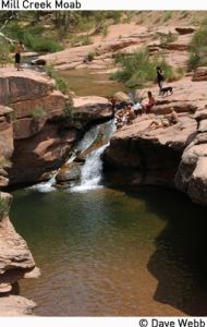 Mill Creek Swimming Hole - Moab. How have I not known about this before? Moab is so close to us!
