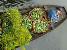 Ein mit Gurken und andrem Gemüse vollgeladener Spreewaldkahn von oben. © picture-alliance / dpa